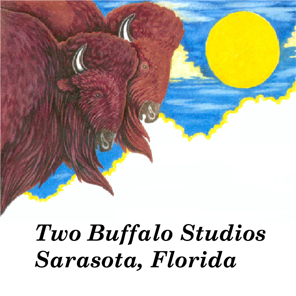 Two Buffalo Studios